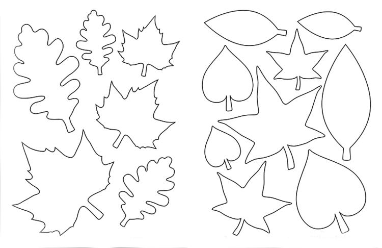 Diversity Tree Instructions